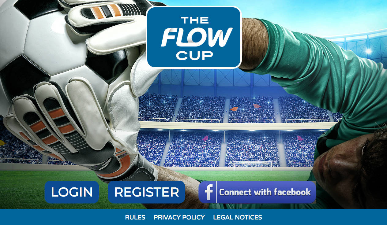 The Flow Cup