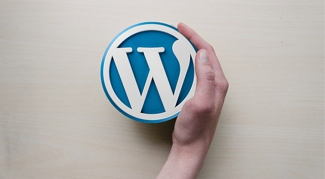 Why you should choose WordPress for your business website?